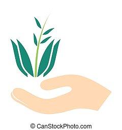 エコロジー, 印, シンボル, -, イラスト, 環境, eco, ベクトル, 緑, icon.
