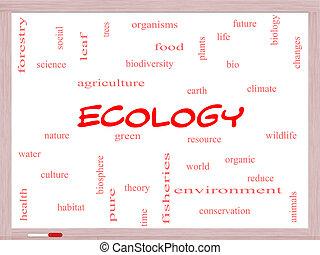 エコロジー, 概念, 単語, 雲, whiteboard