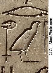エジプト, イメージ, 古代, クローズアップ, hieroglyphics