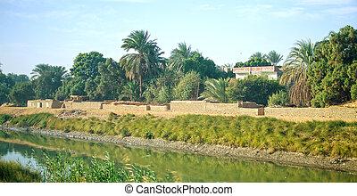 エジプト, オアシス