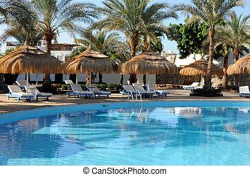 エジプト, プール, 水泳