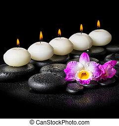 エステ, 概念, の, 蘭, 花, そして, 横列, 白, 蝋燭, 上に, 黒, 禅, 石, 背景, ∥で∥, 露, クローズアップ