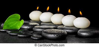 エステ, 静かな 生命, の, 横列, 白, 蝋燭, そして, 緑の葉, 上に, 黒, 禅, 石, 背景, ∥で∥, 露, パノラマ