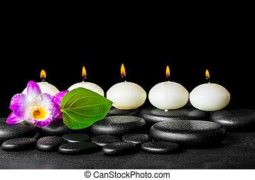 エステ, 静かな 生命, の, 横列, 白, 蝋燭, 蘭, 花, dendrobium, そして, 緑の葉, 上に, 黒, 禅, 石, 背景, ∥で∥, 露, クローズアップ