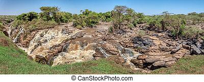 エチオピア, awash, 滝, 国立公園