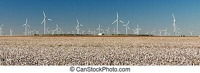 エネルギー, タービン, フィールド, テキサス, 選択肢, 農業, 風, 綿