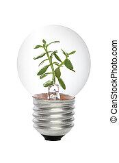 エネルギー, 概念, 緑