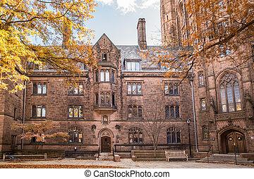 エール 大学