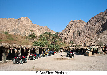 オアシス, 砂漠
