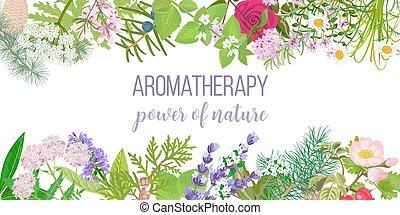 オイル, カード, テキスト, aromatherapy., plants., フレーム, 必要, 自然, 力, 装飾