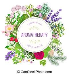 オイル, バッジ, 人気が高い, 植物, ラウンド, テキスト, 必要, set., ラベル, aromatherapy