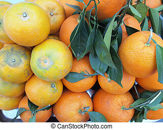 オレンジ背景
