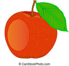 オレンジ, 桃, illustration., -