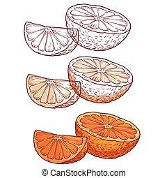 オレンジ, 白, セット, 水分が多い, 背景