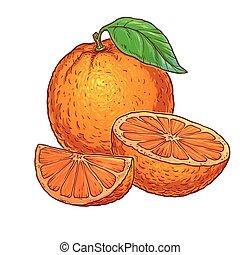 オレンジ, 白, 水分が多い, 背景