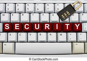 オンラインで, セキュリティー