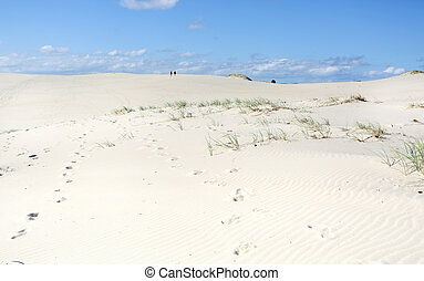 オーストラリア, ポイント, 砂丘, 暗い, 砂