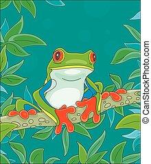 カエル, カラフルである, 熱帯 木, ブランチ, 面白い