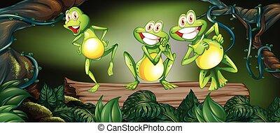 カエル, ジャングル, 3, 丸太, ダンス