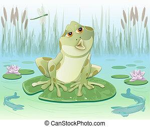 カエル, 中に, a, 池