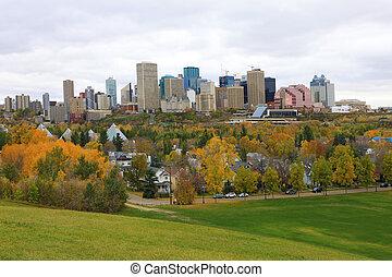 カナダ, エドモントン, アスペン, カラフルである, 秋, 都市の景観