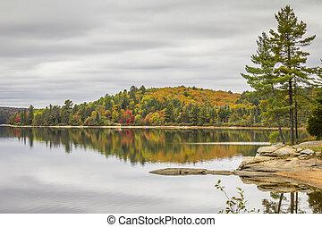 カナダ, オンタリオ, 秋, -, 湖