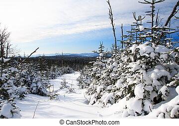 カナダ, ケベック, 風景, 冬