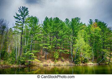 カナダ, 北, オンタリオ, 湖, 反映, 森林, 冷静
