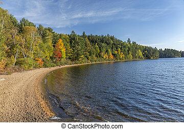 カナダ, 海岸線, オンタリオ, -, 湖, 秋, 砂