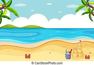 カニ, 城浜, 砂, わずかしか, 現場
