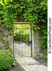 カバーされた, 古い, ivy., 門, 緑, 庭, 美しい