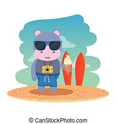 カバ, 浜, 氷, カメラ, 写真, クリーム