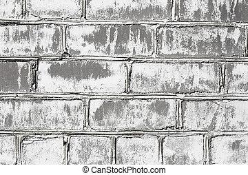 カビ, 壁, 傷つけられる, れんが