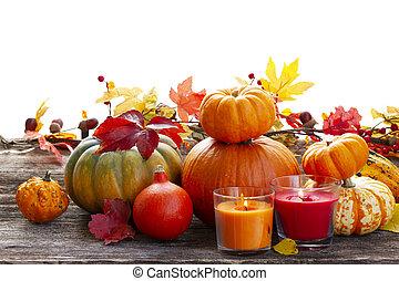 カボチャ, 収穫, 秋