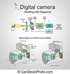 カメラ, dslr, デジタル