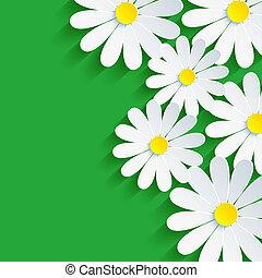 カモミール, 花, 春, 抽象的, 背景, 3d