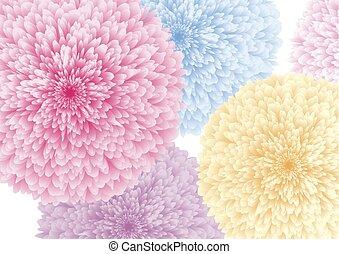 カラフルである, イラスト, ベクトル, 背景, 白い花