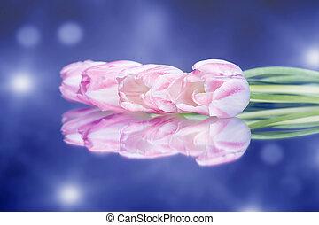 カラフルである, チューリップ, bokeh, 背景, 花, 光沢がある