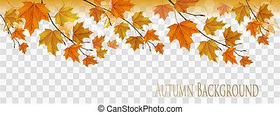 カラフルである, パノラマ, 抽象的, 秋, ベクトル, 背景, 葉, 透明