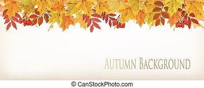 カラフルである, パノラマ, 葉, 秋, バックグラウンド。, vector., 秋