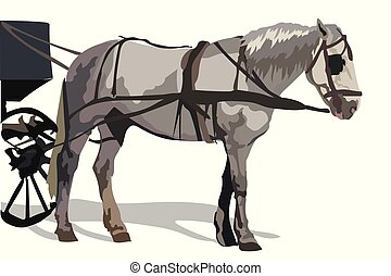 カラフルである, ベクトル, 馬
