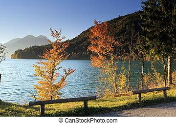 カラフルである, 木, 湖