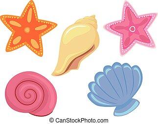 カラフルである, 海, ヒトデ, 殻