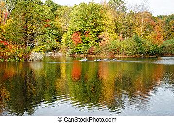 カラフルである, 秋葉っぱ