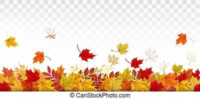 カラフルである, 自然, パノラマ, leaves., 秋, ベクトル