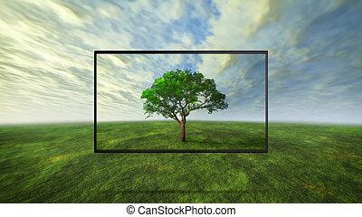 カラフルである, 野生, 木, 概念, の, tv, 背景
