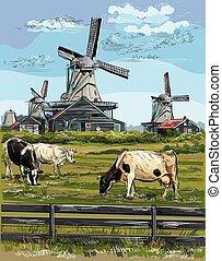 カラフルである, 8, 図画, オランダ, ベクトル, 手