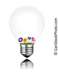 カラフルなライト, 中, 隔離された, 様々, 成長する, 電球, 花