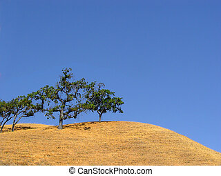 カリフォルニア, 丘