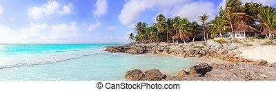 カリブ海, メキシコ\, トロピカル, パノラマである, tulum, 浜